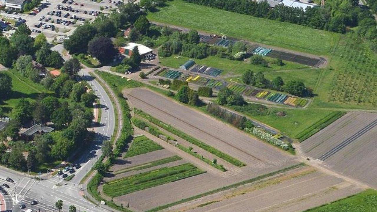 Neues Zentralkrankenhaus: Elmshorn bietet Regio-Kliniken Grundstück an