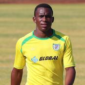 GladAfrica newbies Bizana Pondo ChiefS sign Baroka striker on loan