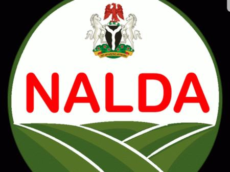 NALDA has Certified 269 Soil Experts to Boost Food Security in Borno.