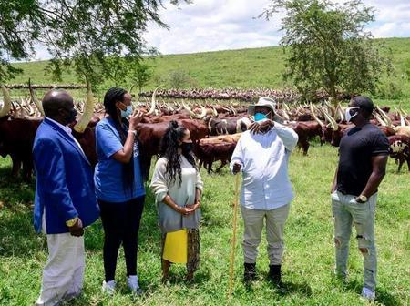 American Singer, Akon Pays a Visit to A cattle Ranch In Uganda [Photos]