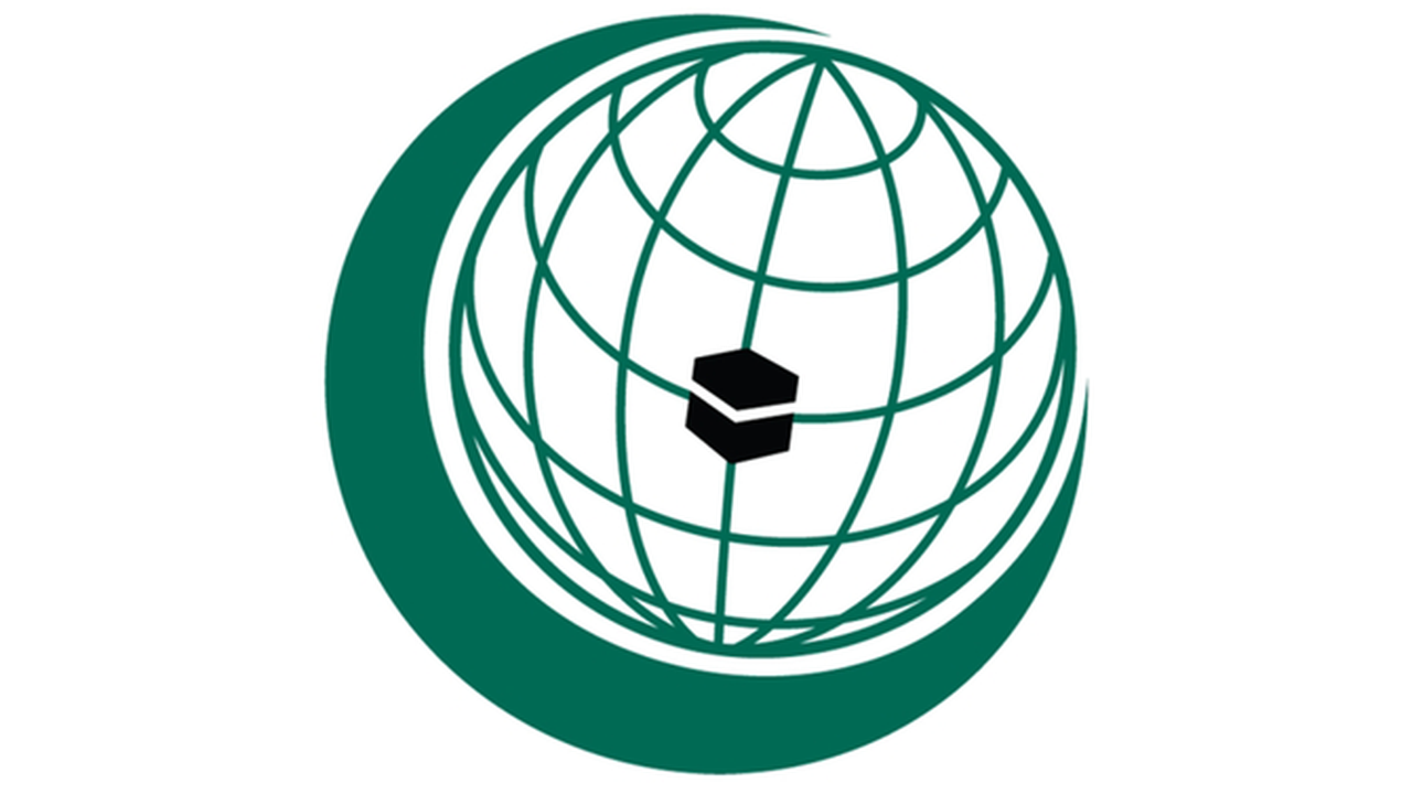 OIC condemns Houthi attack against Saudi Arabia on Eid