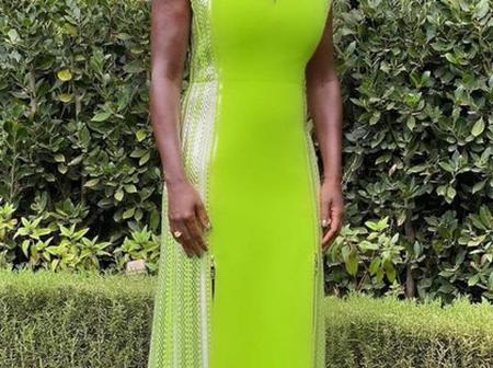 5 Best Dressed Female Celebrities at The SAG Awards (Photos)