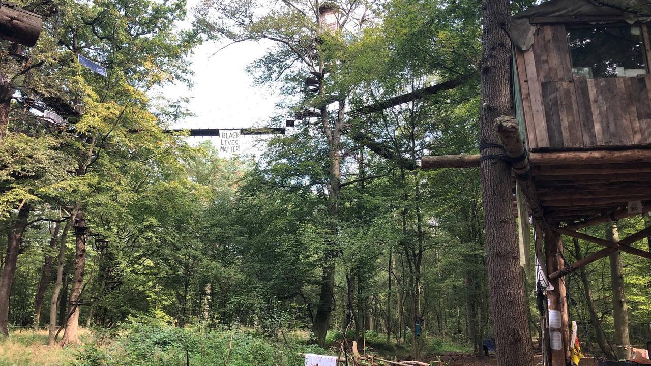 Heftiger Streit um Auslegung des Urteils zum Hambacher Forst