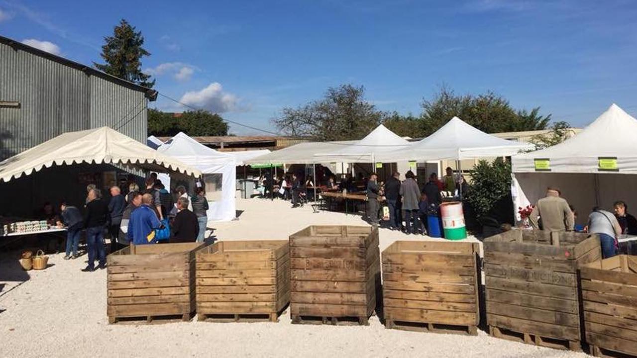FÉNAY : La Ferme de la Sans-Fonnaise ouvre ses portes