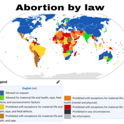 Countries Where Abortion Is Legalised In The World