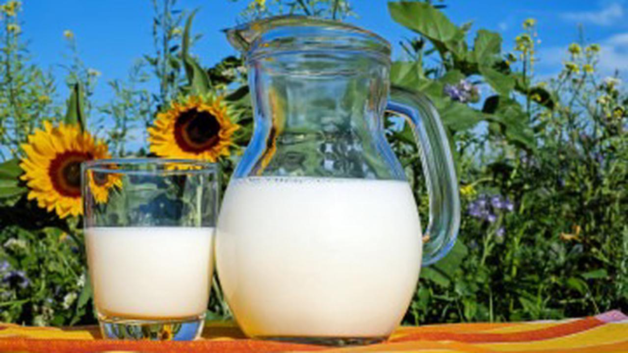Will Drinking Milk Wreck Your Intermittent Fast?