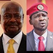 Between Bobi Wine And Museveni, Who is Highly Educated?
