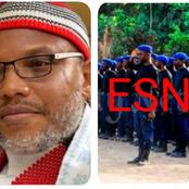 Opinion: ESN Should Drop Their Weapons And Surrender To The Nigerian Military Before It's Too Late