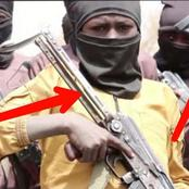 See The Kind Of Guns That A Terrorist Group In Nigeria Gave Its Child Recruits To Train With