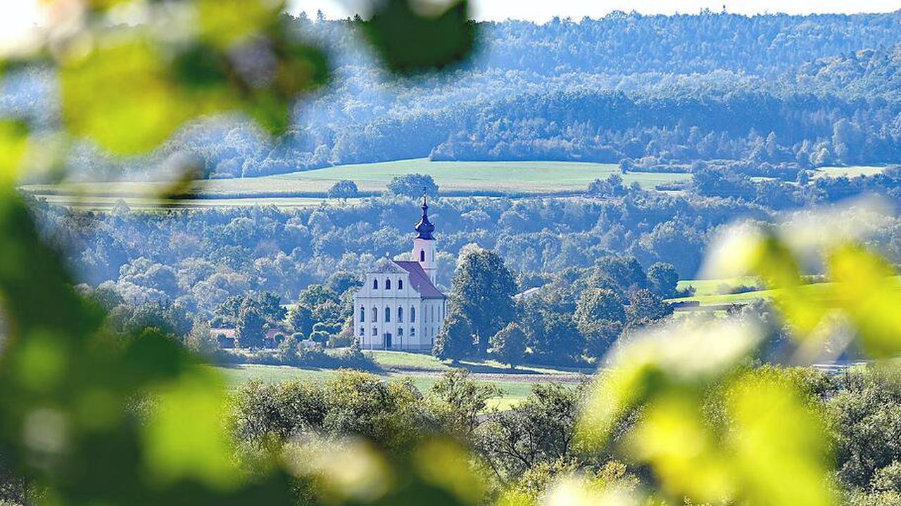 Terroir-f-Punkt: Magischer Blick aus dem Weinberg auf Maria Limbach