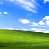 أخيرًا.. تم تحديد مكان التقاط صورة ويندوز XP الشهيرة.. مفاجأة غير متوقعة