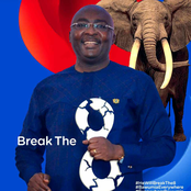 Our surest hope to break the eight in 2024 is Dr. Bawumia - NPP grassroots campaigners