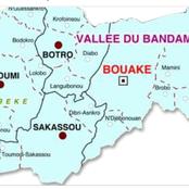 Résultats des législatives : le RHDP et l'opposition au coude à coude dans le Gbêkê