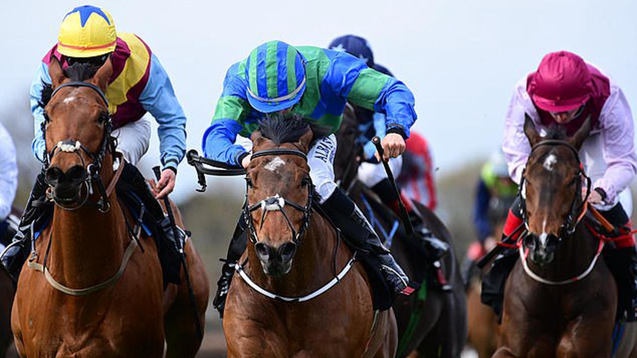 Robin Goodfellow's Racing Tips: Best bets for Friday, April 23