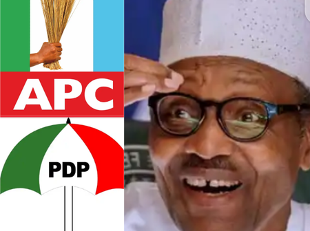 2023 PRESIDENCY: Why PDP Might Not Defeat APC