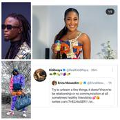 Elites throws shade at Laycon after Kiddwaya responded to Erica's recent tweet