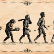 Are Humans Still Evolving? Find Out What Will Happen In Years To Come
