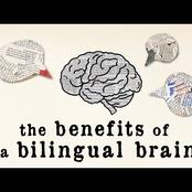 Can You Speak More Than One Language? If So, You Probably Do Not Know What It Does To Your Brain