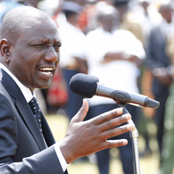 'BBI Campaigns Have Halted Everything!' Ruto Blames The BBI For Stalled Government Projects