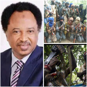 Kagara School Students Have Been Released By Bandits - Shehu Sani