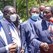 No Walk in the Park for Gideon Moi, Kalonzo, Musalia and Wetangula After Fresh Details Emerge