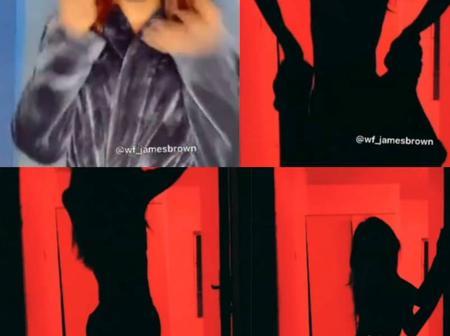 "Cross Dresser, James Brown, has released his own ""Silhouettechallenge"" (video)"