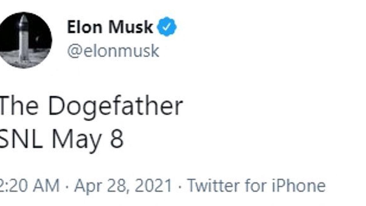 Dogecoin soars 20 as Elon Musk decrees himself 'The Dogefather ...