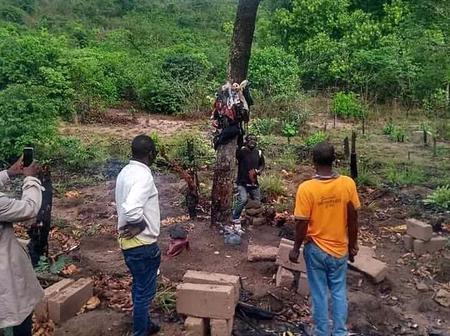 Evil Shrine Discovered In Abia