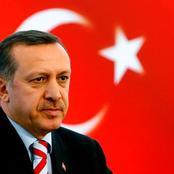 International Politics: The Rise of Turkey - Is Turkey A Global, Regional or Muslim Power?