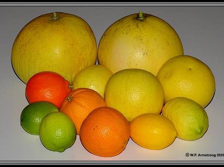 Underrated fruit. The fruit cancels Body odour, pimples and Aids digestion