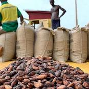 Breaking News: Cocoa Dealer Killed By Armed Robbers At Sankore - Abuom In The Brong Ahafo Region