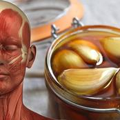 You will be surprised to know the benefits of eating garlic dipped in honey