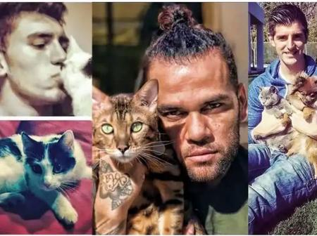 Feline Lovers: Top Five Famous Footballers Who Really Love Cats As Pets. (Pictures Below)