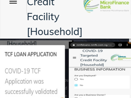 Covid19 loan: see the easiest way to successfully apply for the fg household credit support scheme