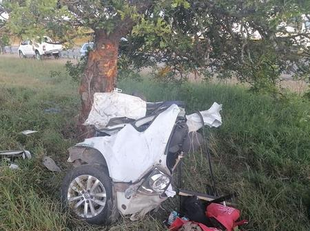 Deadly polo crash with the tree. Check here