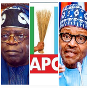 Today's Headlines: Another Politician Resigns From APC, Tinubu Urges Youths To Avoid Thuggery