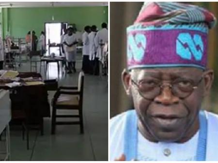 30 Students Hospitalised, Arewa Tips Amaechi, Tinubu, Others As Buhari Pontential Successor