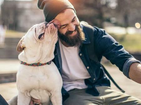 5 Good Reasons Why You Should Own A Pet