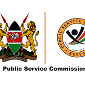 What Does It Take For One To Be Shortlisted And Employed By Public Service Commission?