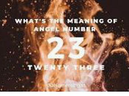 Weird and Enchanting Facts About the Number 23