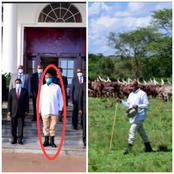 Museveni Ridiculed for Meeting Tanzanian Special Envoy Without Changing Clothes After Herding Errand