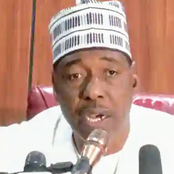 Borno Gov Calls for Northern Security Outfit, Mercenaries to Fight Boko Haram