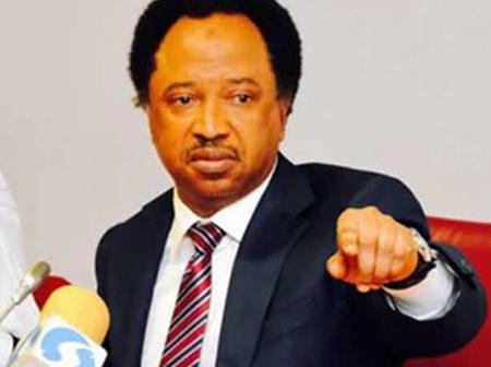 If You Are Not Touched By The Killing Of Those Farmers Then You're Worst Than Boko Haram- Shehu Sani