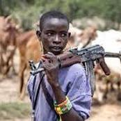 Alleged Fulani Herdsmen, Kill A Young Girl In Ogun State