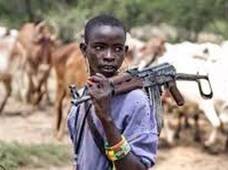Alleged Fulani Herdsmen, Kill A Young Girl In Ogun State
