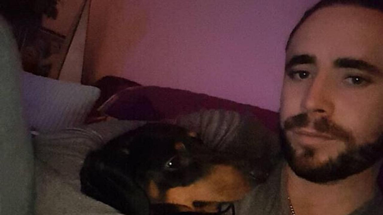 Irish owner's agony as beloved dog killed and dumped in canal