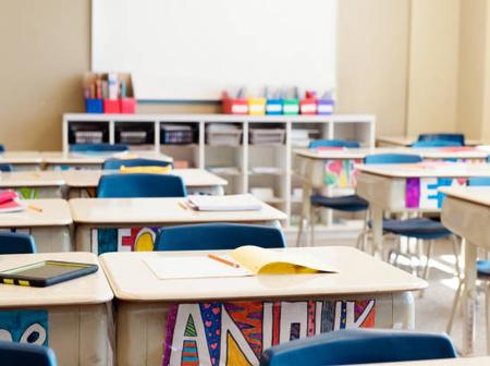 Shortage of teachers at Northern Cape school reportedly disrupting schooling
