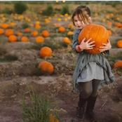 Impressive Health Benefits of Pumpkin