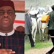 We Must Not Allow The Actions Of A Few To Make Us Hate The Entire Fulani Tribe In Nigeria - FFK