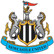 Man pleads after accidentally placing £2,000 on Newcastle to qualify for Champions League
